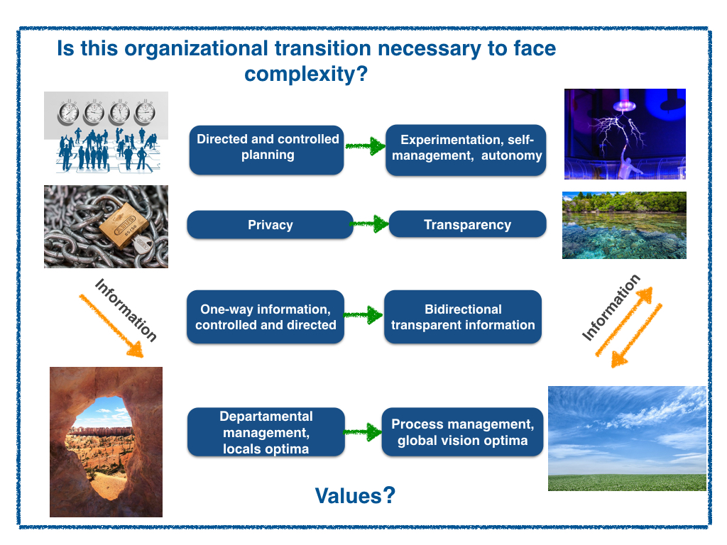 The real values to evolve an organizational system?